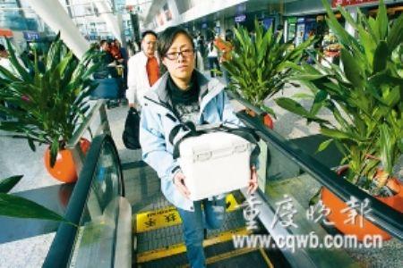 """陕西""""生命种子""""飞重庆救四川白血病男孩"""