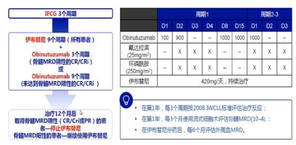 易树华教授:CLL一线治疗选择 | 第四届中国慢性淋巴细胞白血病大会